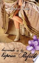 libro Buscando A La Esposa Perfecta