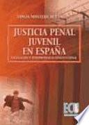 libro La Justicia Penal Juvenil En España: Legislación Y Jurisprudencia Constitucional