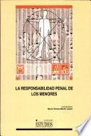 libro La Responsabilidad Penal De Los Menores