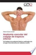 libro Anatomia Vascular Del Colgajo De Trapecio Inferior