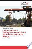 libro Condiciones De Autoignición En Pilas De Materiales Sólidos De Riesgo