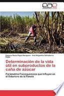 libro Determinación De La Vida Útil En Subproductos De La Caña De Azúcar