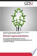 libro Etanol Lignocelulósico