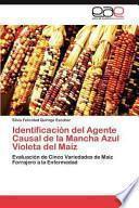 libro Identificación Del Agente Causal De La Mancha Azul Violeta Del Maíz
