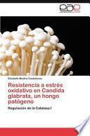 libro Resistencia A Estrés Oxidativo En Candida Glabrata, Un Hongo Patógeno