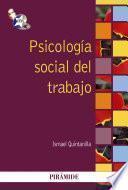 libro Psicología Social Del Trabajo